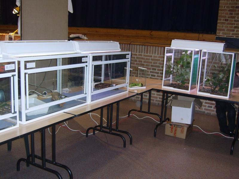 2008 - 09 - les 27 et 28 - Exposition à Bailleul (59) Sv100812
