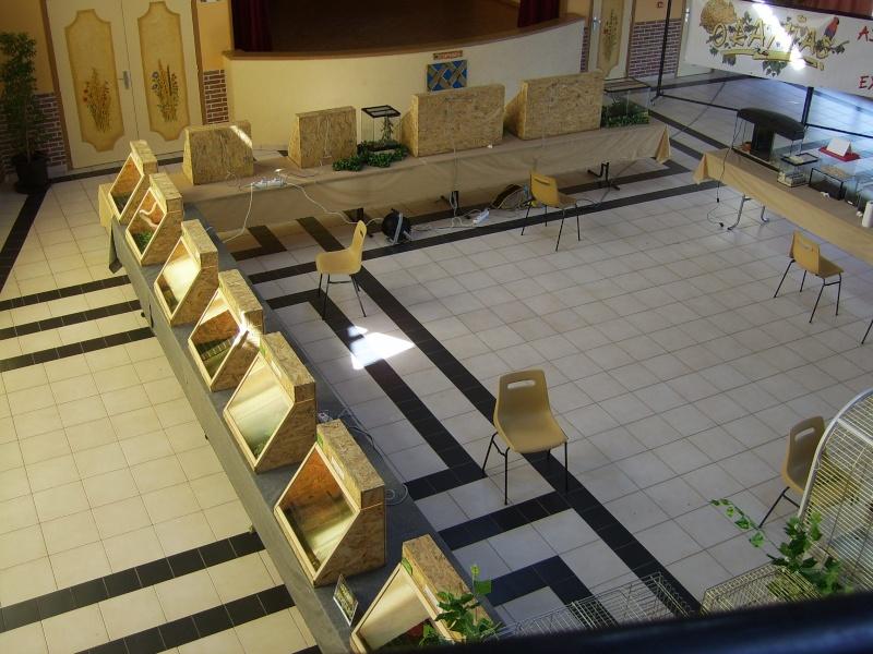 2006 - 07 - le 02 - Exposition à Bailleul sir-Berthoult (62) Sv101910
