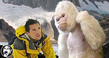 Bear Grylls vs Yeti Bearvs10