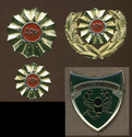 Macedonian Army cap badges Arm10