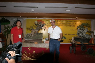 Tenth Asia Pacific Bonsai and Suiseki Exhibition - Page 3 Casasp11