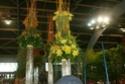 Notre visite aux floralies de NANTES le 11 05 2009 Copie_11