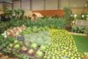 Notre visite aux floralies de NANTES le 11 05 2009 Dsc04141