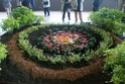 Notre visite aux floralies de NANTES le 11 05 2009 Dsc04212