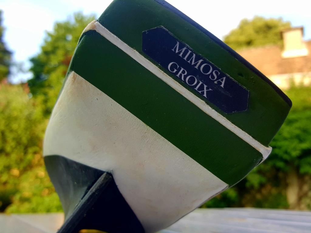 """Thonier (dundée) de Groix - Le """"Mimosa"""" - 1/50 (kit Soclaine) - Page 3 20180761"""