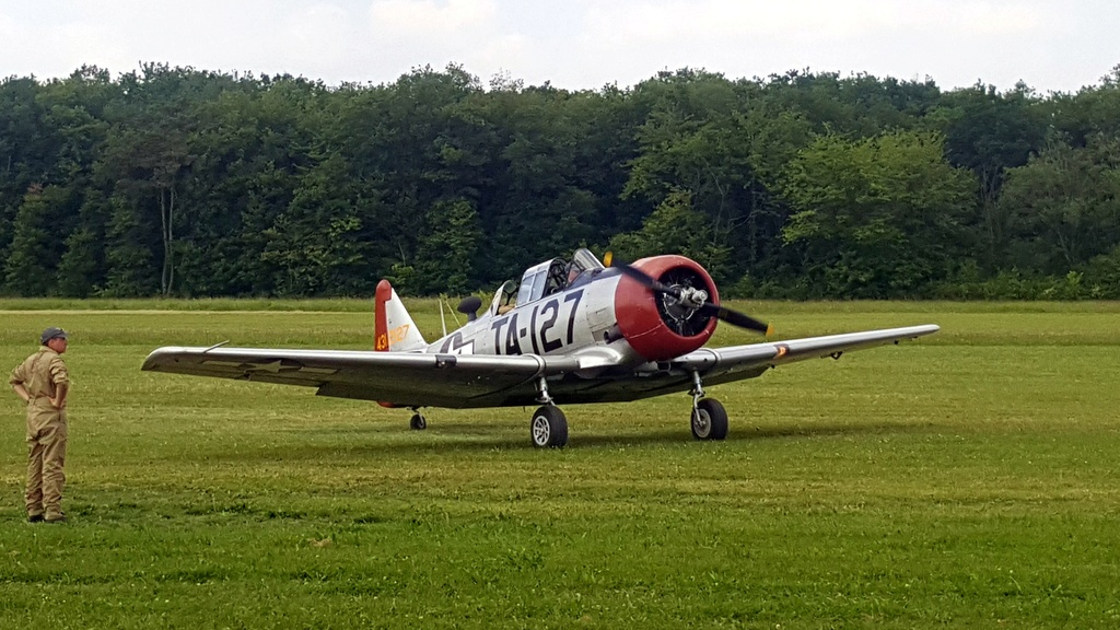 "Texan T-6 TA-349 ""Dazzlin' Deb"" - 1/32 [Terminé] 3710"