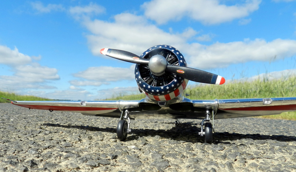 "Texan T-6 C TA-349 ""Dazzlin' Deb"" - Col. Thomas E. Murphy - 47th Flying Trainig Wing USAF Ext0310"