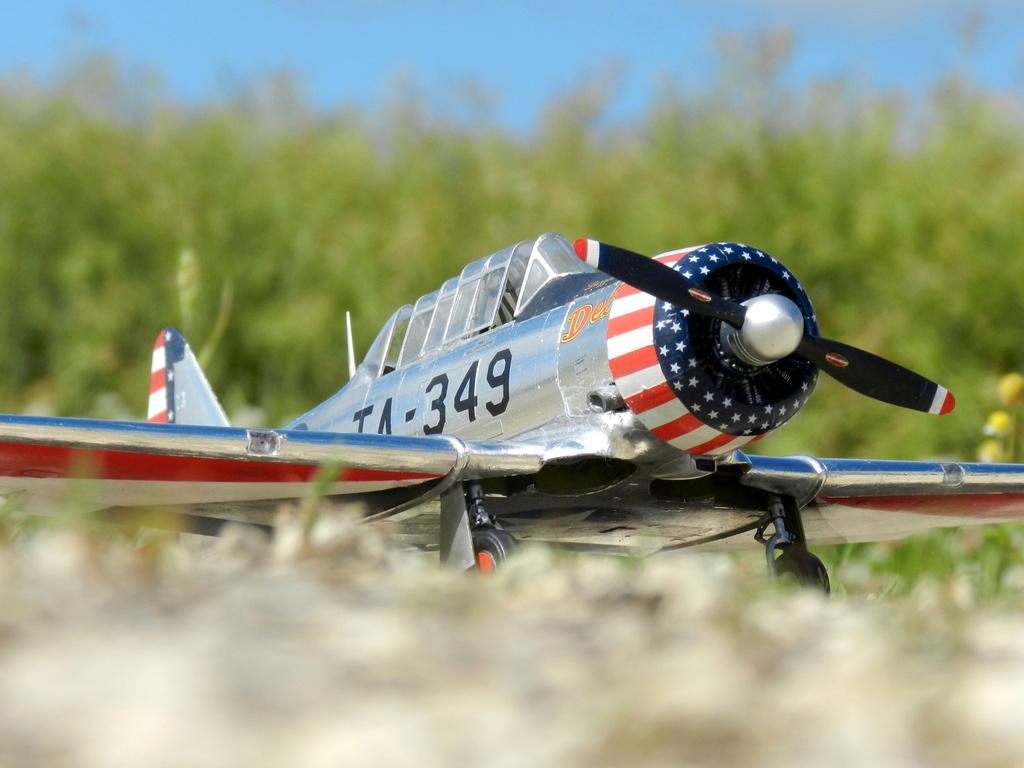 "Texan T-6 C TA-349 ""Dazzlin' Deb"" - Col. Thomas E. Murphy - 47th Flying Trainig Wing USAF Ext1010"