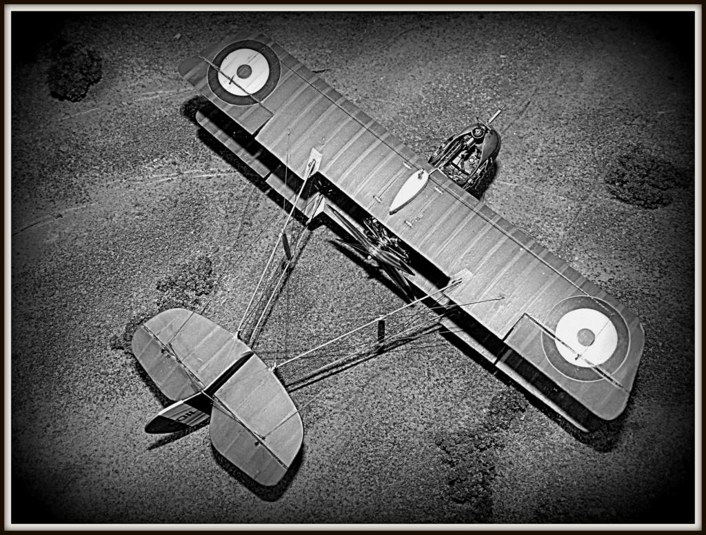Airco DH 2 [Eduard 1/48] - Cpt. Arthur Gerald Knight Nb0210