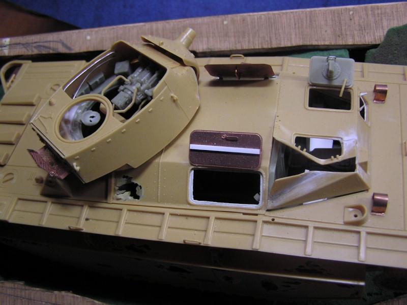 My first K.O. Tank ... P1010116