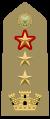 Tenente colonnello con funzioni di colonnello