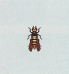 Tutti gli insetti Ape10