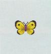 Tutti gli insetti Farfal13