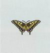 Tutti gli insetti Farfal15