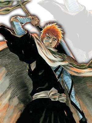 Bleach Manga 246811