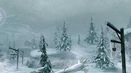 Blizzard 40479510