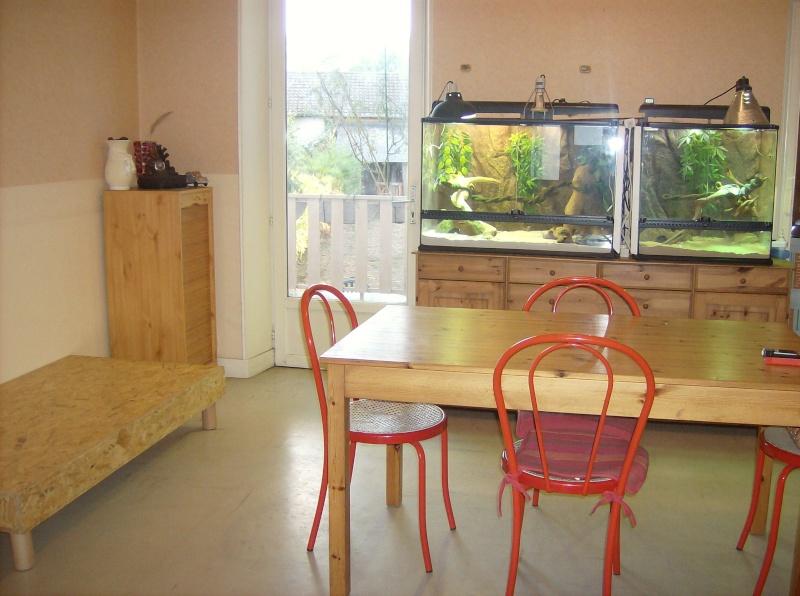 Construction de meuble avec 2 terra incrustés dedans - Page 2 Hpim3427