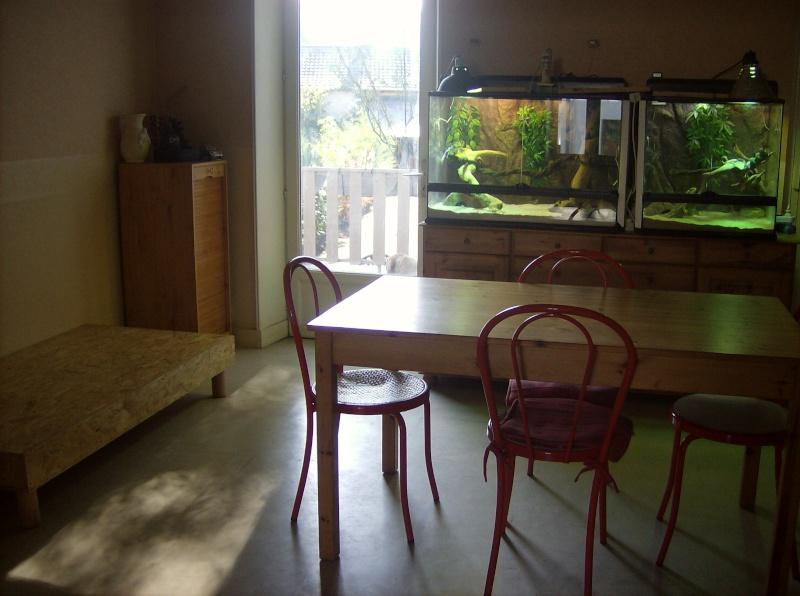Construction de meuble avec 2 terra incrustés dedans - Page 2 Hpim3430