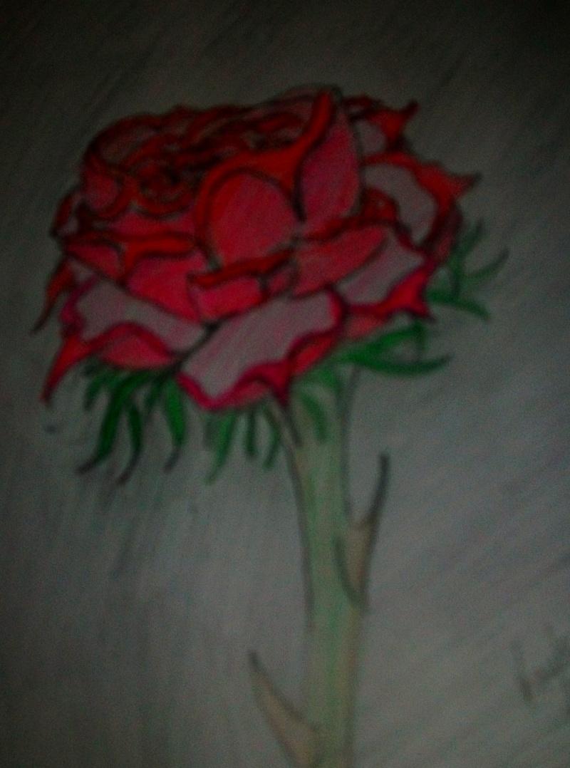 random drawings Sany4510