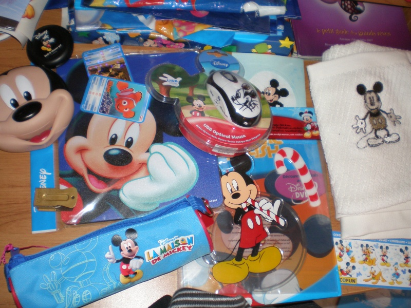 Ma collection Mickey Gngj_019
