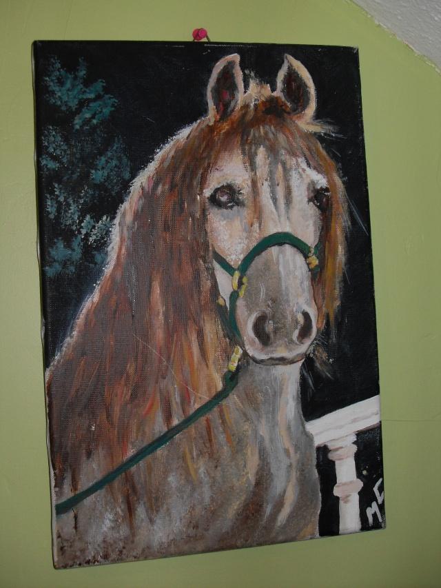 materiel d'equitation New_0314
