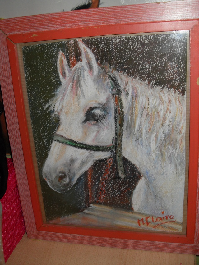 materiel d'equitation New_0315