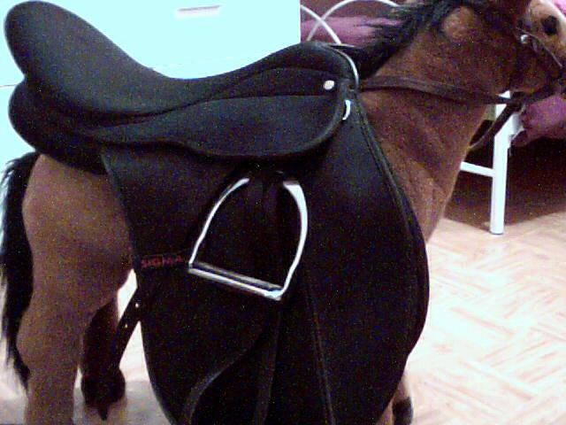 materiel d'equitation Pictur10