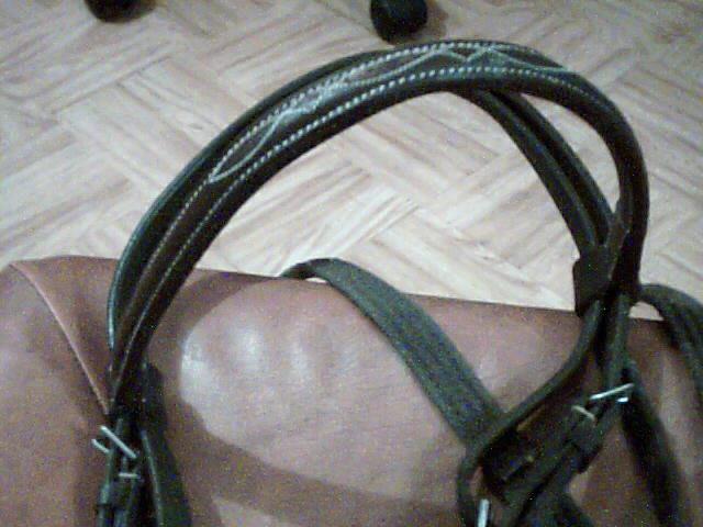 materiel d'equitation Pictur14