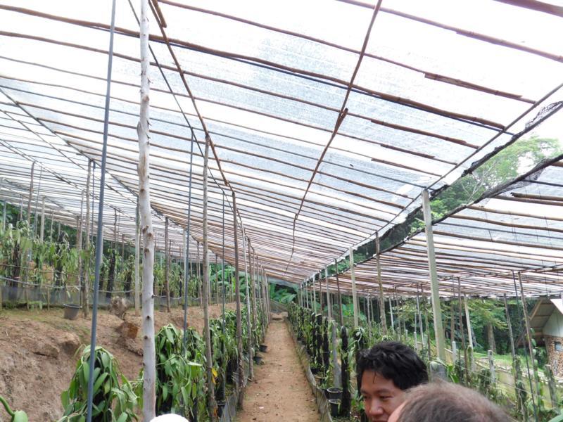 Alentour de Chiang Maï : Mai Siam Resort Sdc10015