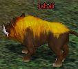 level 6 - conoce al herrero Jabali10