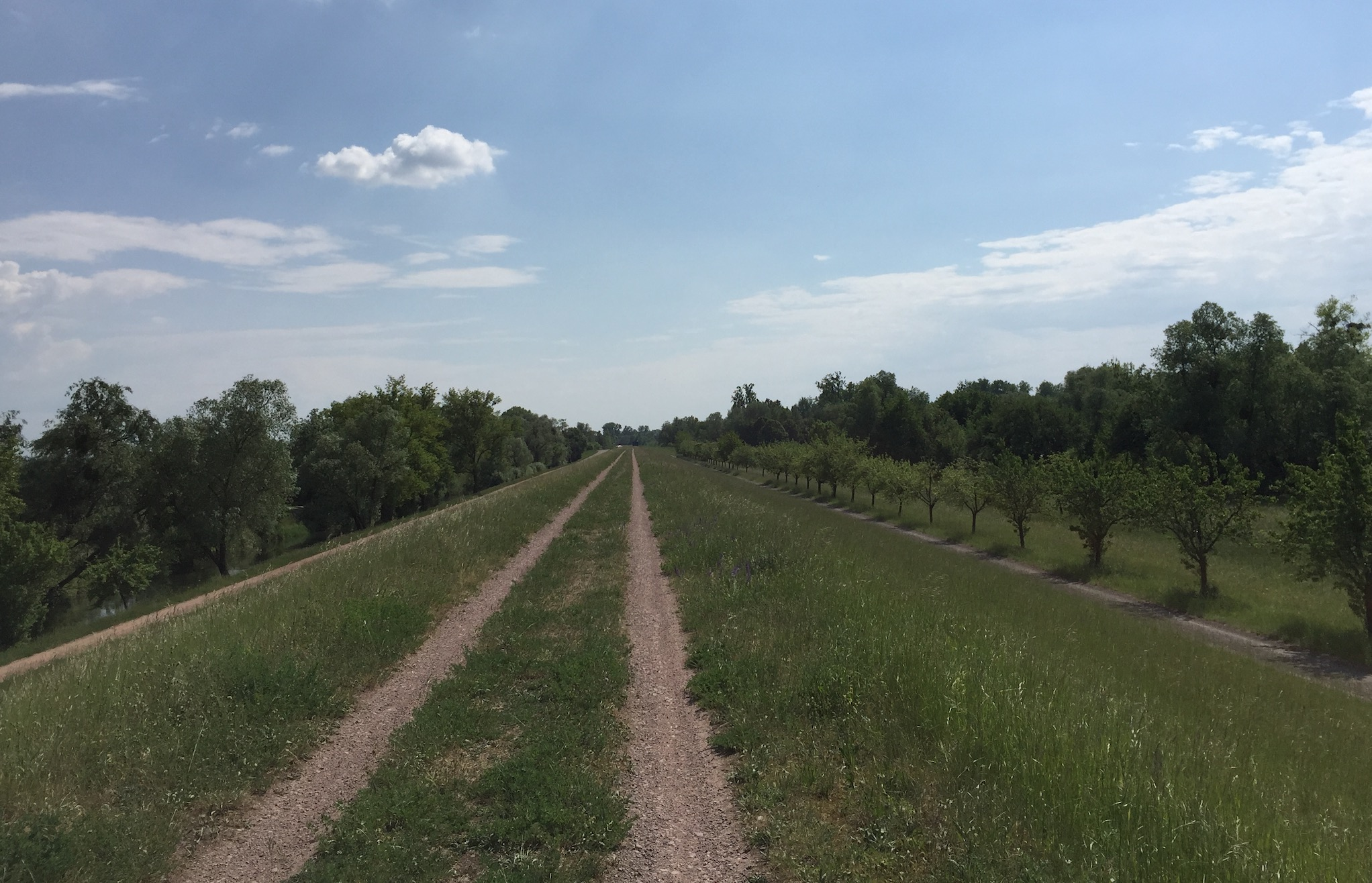 85km à Vélo : La Piste des Forts à Strasbourg A_1210