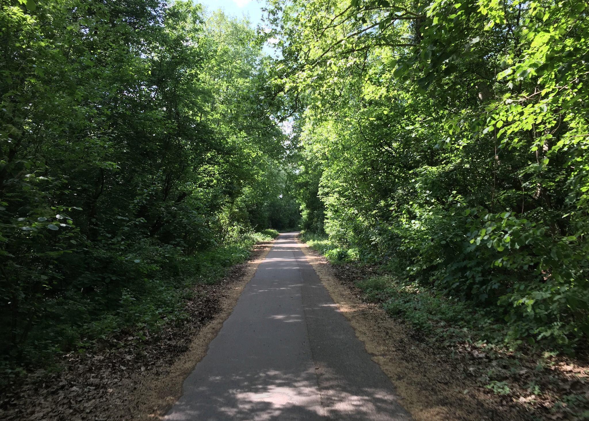 85km à Vélo : La Piste des Forts à Strasbourg A_1510