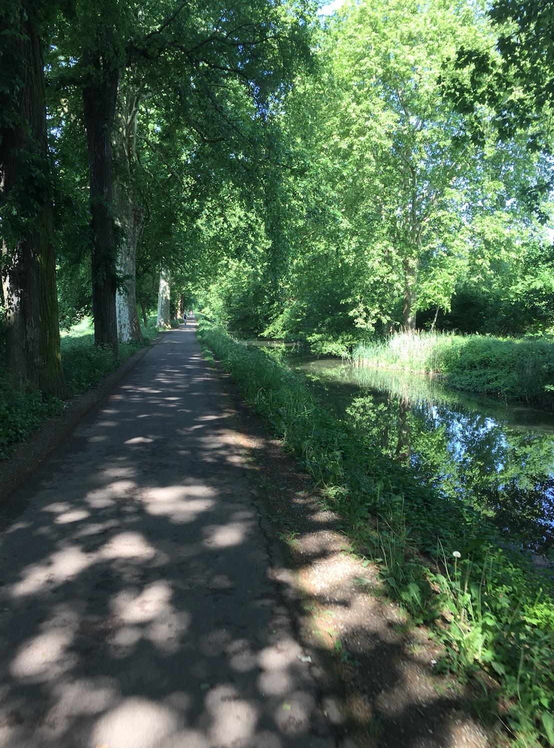 85km à Vélo : La Piste des Forts à Strasbourg A_1810