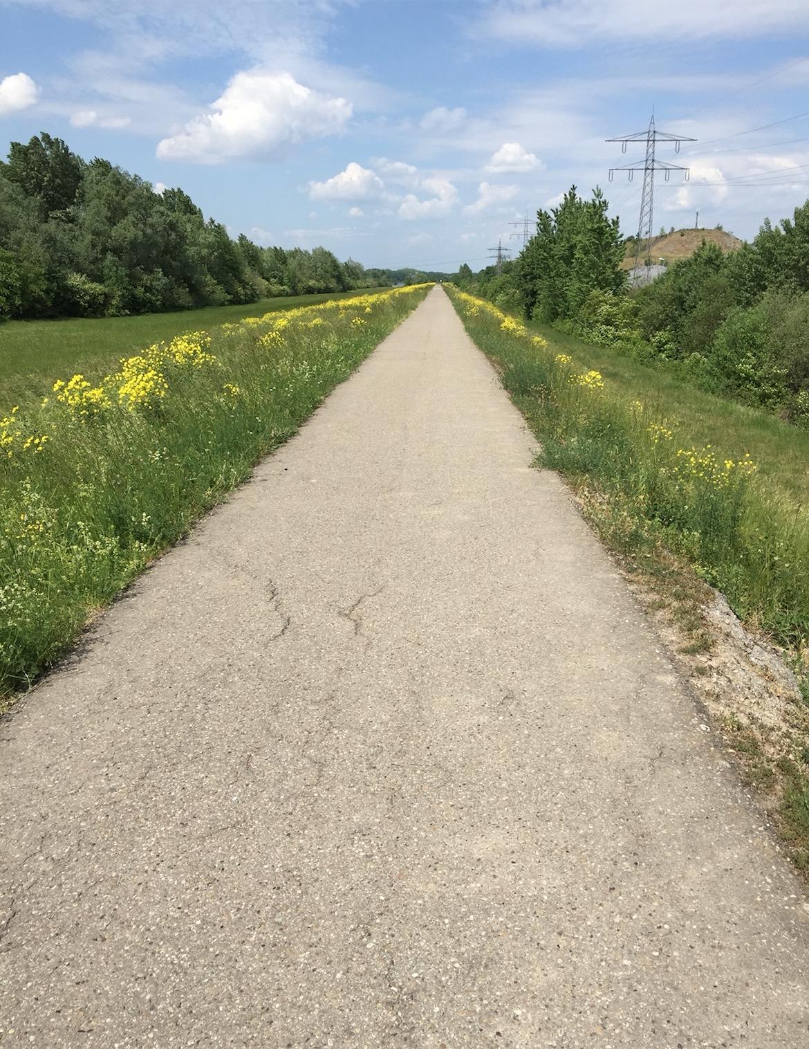 85km à Vélo : La Piste des Forts à Strasbourg A_310