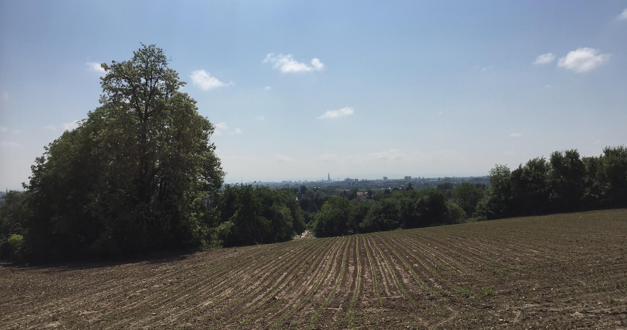 85km à Vélo : La Piste des Forts à Strasbourg B_610