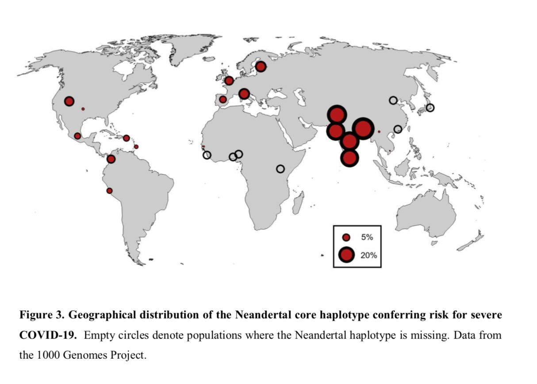 Épidémie/pandémie de Coronavirus/Covid 19 [Tome 3] - Page 14 Captu496