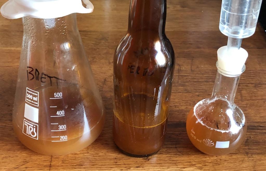 [Brassage] Faire sa bière résiliente - Page 4 Captu685