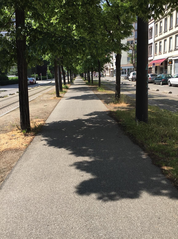 85km à Vélo : La Piste des Forts à Strasbourg Captur16
