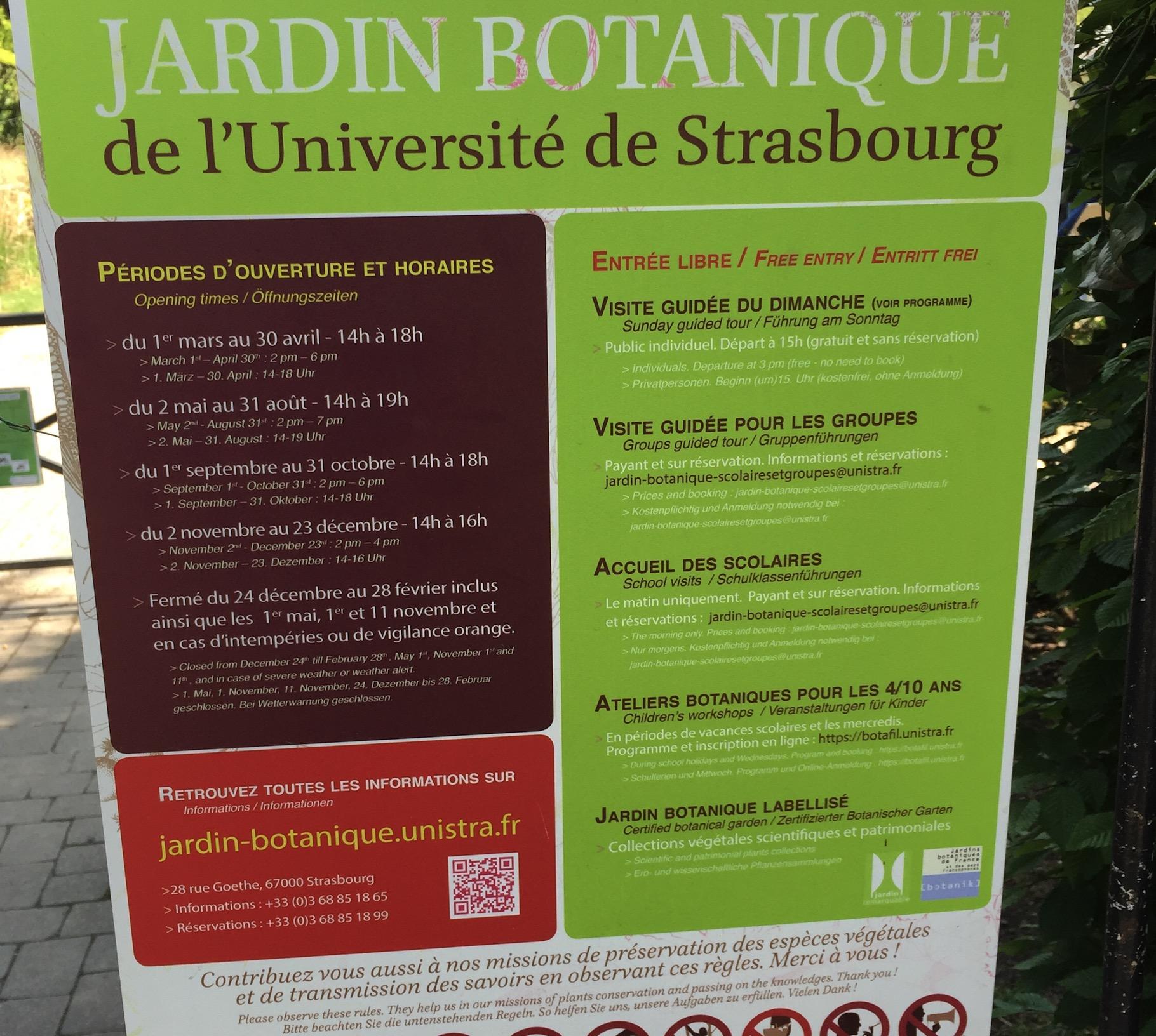 85km à Vélo : La Piste des Forts à Strasbourg Captur18
