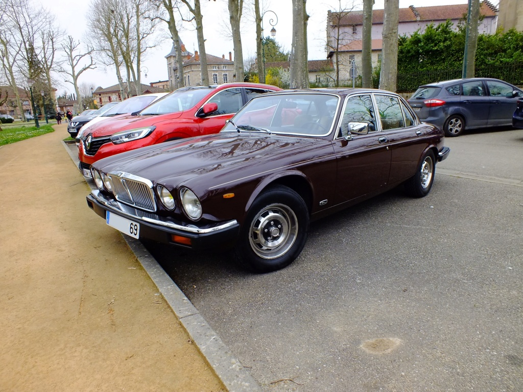 Jaguar : 50 ans de XJ Dscf3210
