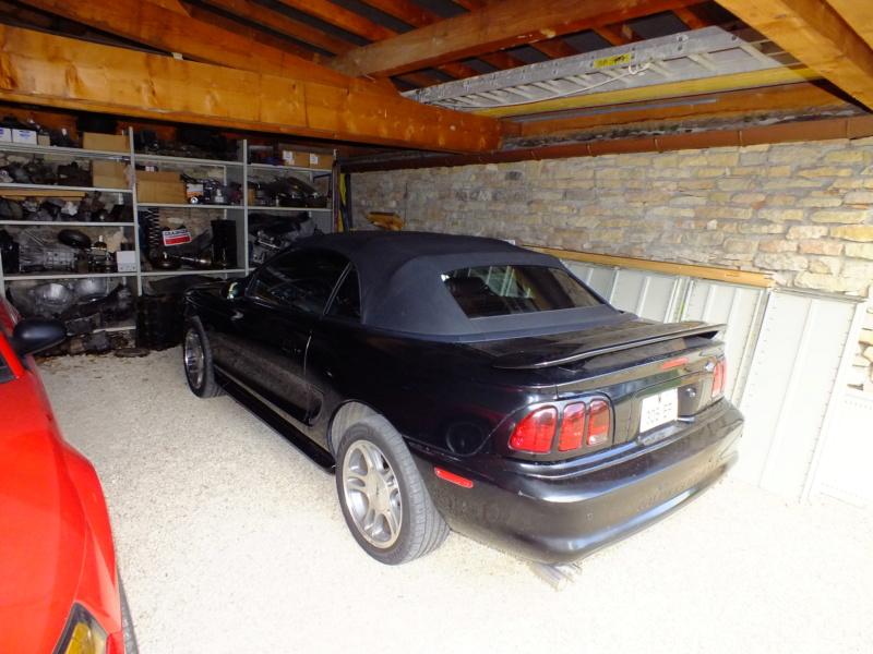 Mustang SN95  Dscf4142