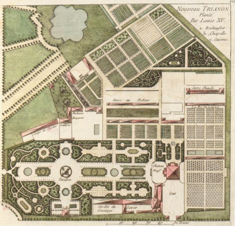 Le jardin botanique de Louis XV au Petit Trianon Nouvea10