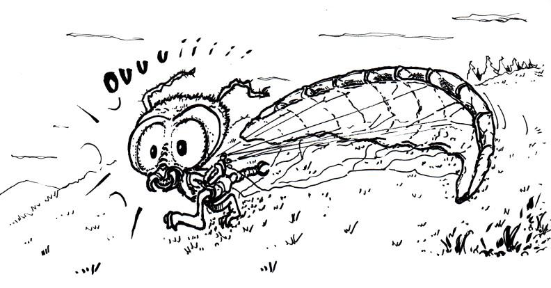 dessin de stefrex - Page 4 Parape10