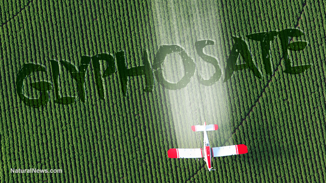Food News - Major U.S. brands demand EPA take action to stop pre-harvest spraying of toxic glyphosate on food crops Glypho10
