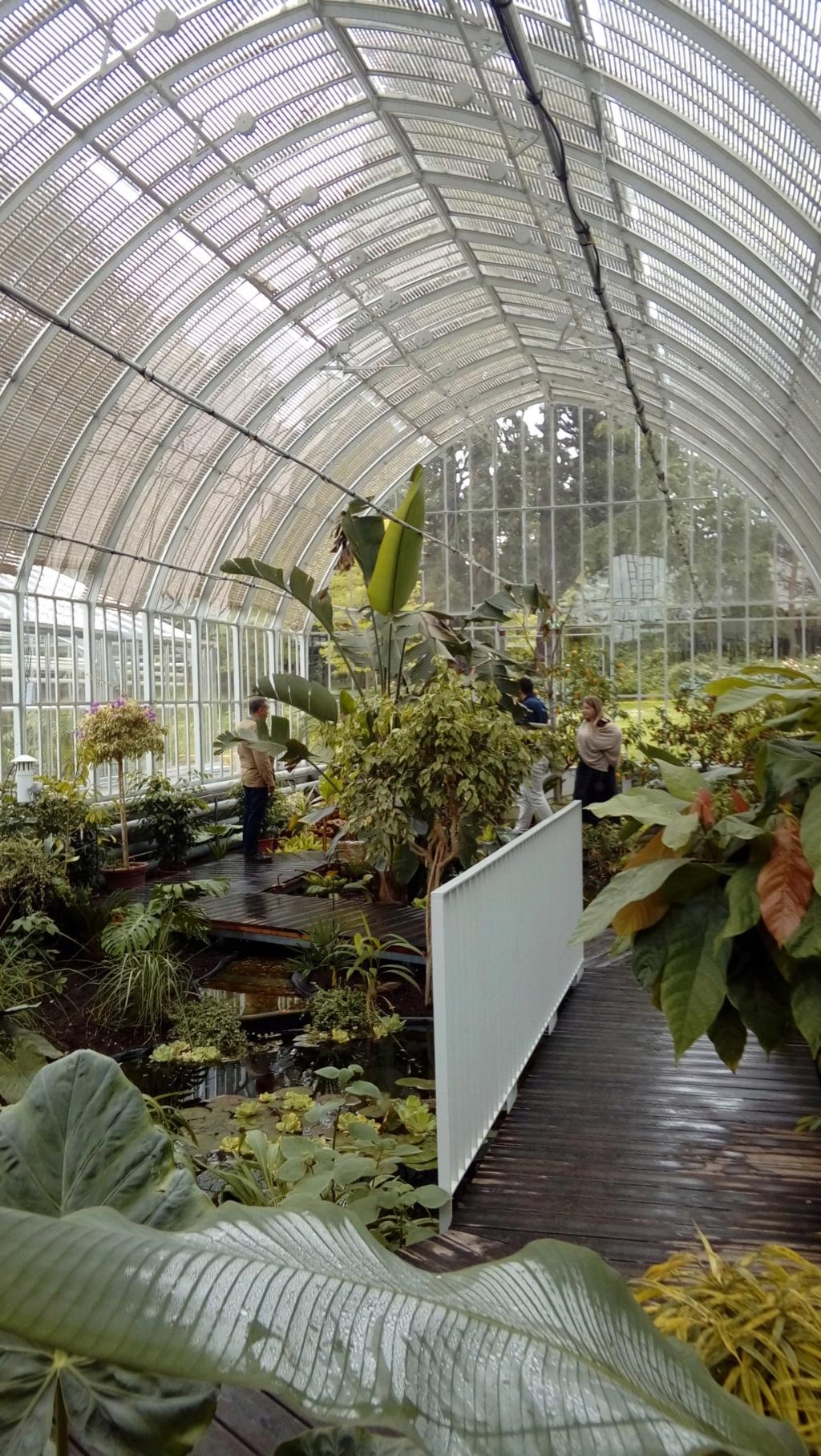 réouverture des serres du jardin des plantes de Rouen 20190514