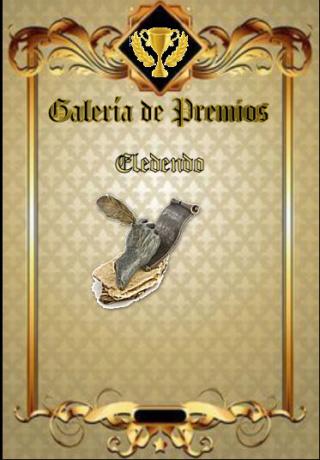 Premios de Eledendo Eleden11