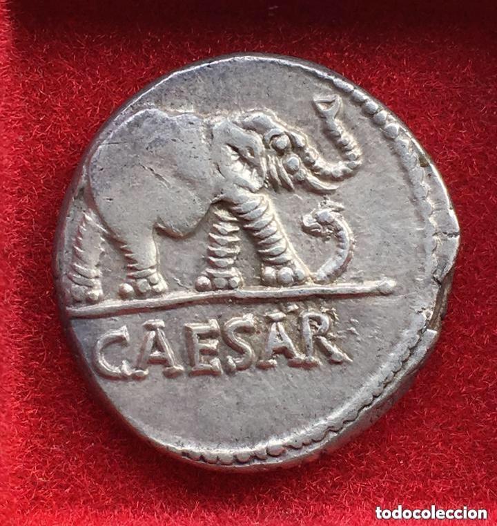 Denario de Julio Cesar. CAESAR. Elefante. Ceca movil  533e7610