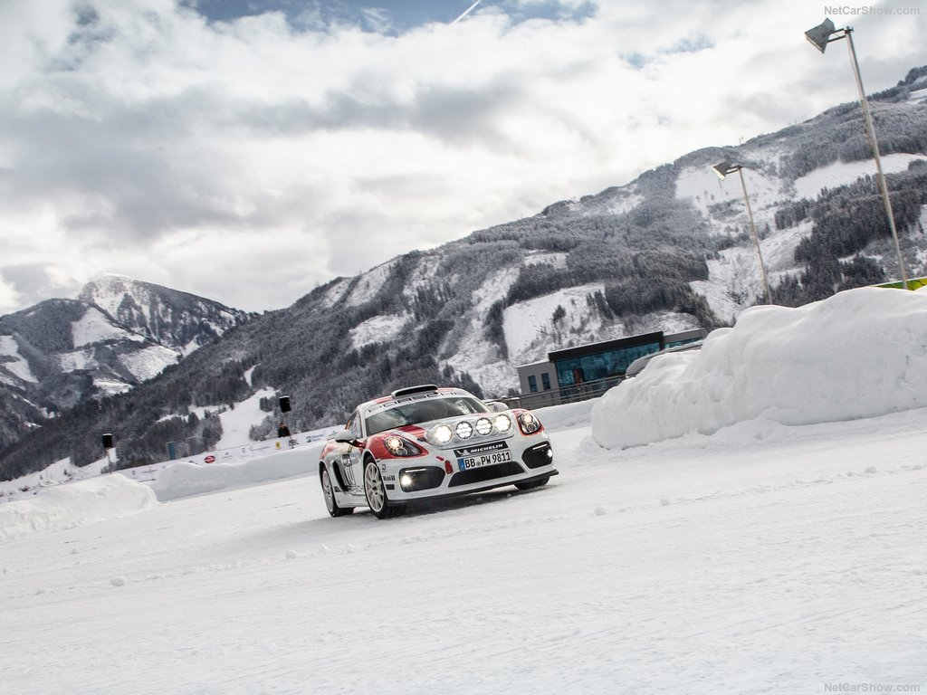 Porsche Cayman GT4 Rallye Concept Porsch22
