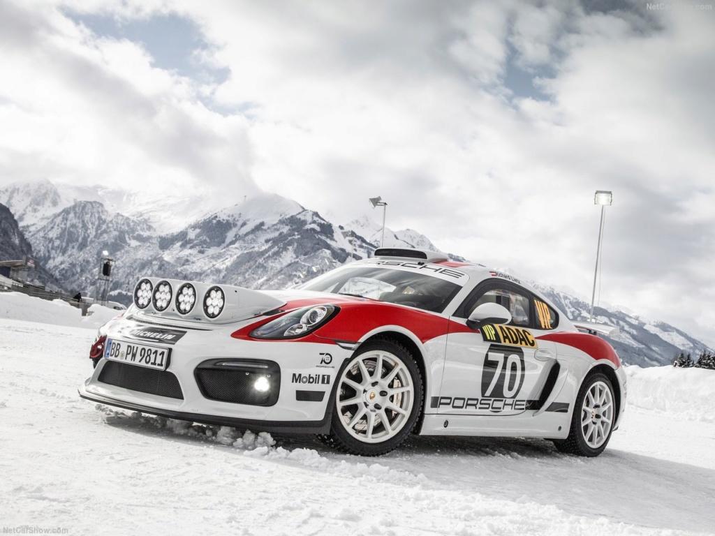 Porsche Cayman GT4 Rallye Concept Porsch23