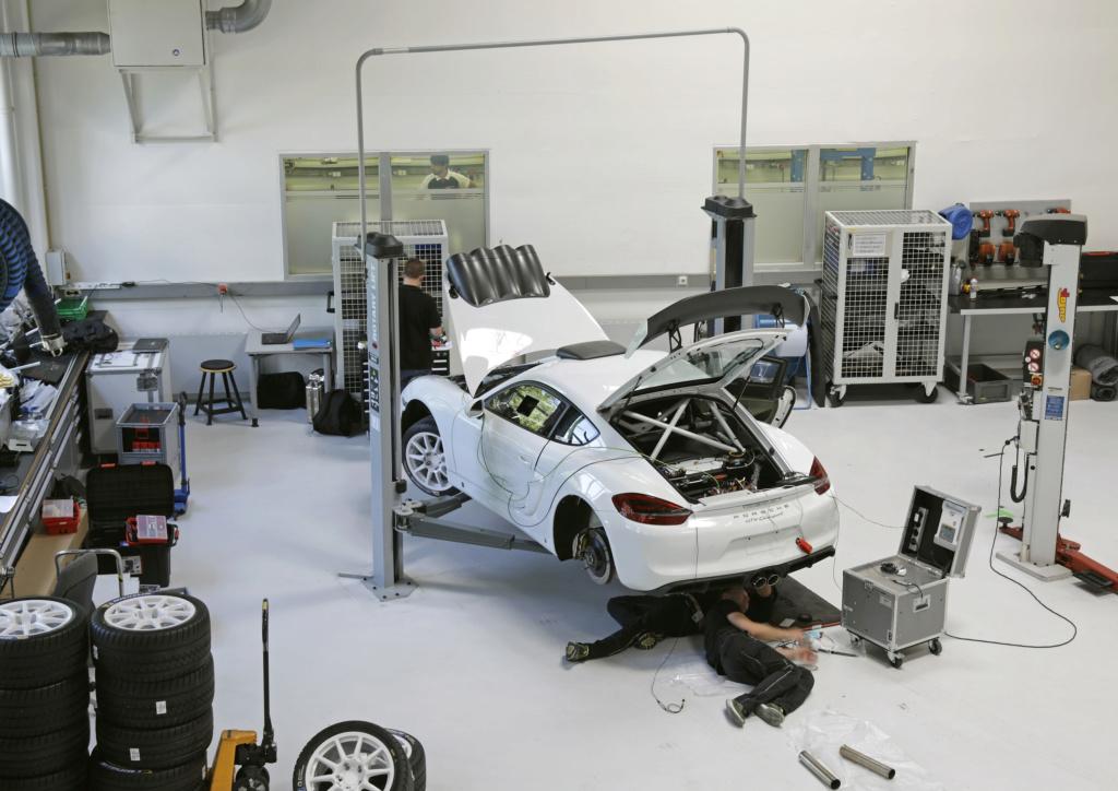 Porsche Cayman GT4 Rallye Concept Porsch26